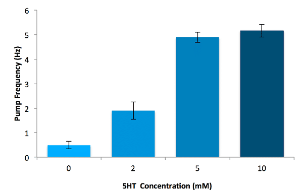 5HT Concentration vs. Pump Frequency in C. elegans - bar graph