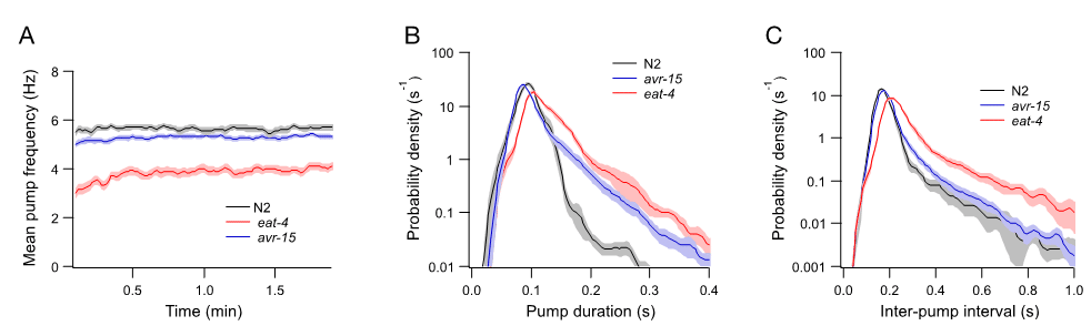 Data analysis of N2 and glutamate neurotransmission in C. elegans mutants eat-4 and avr-15.