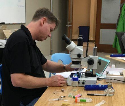 Scientist examining C. elegans in the NemaMetrix ScreenChip system under a microscope