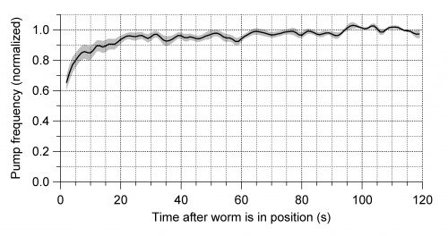 Short Term Stationarity: Effect on Pumping Frequency of Positioning Worms in the ScreenChip