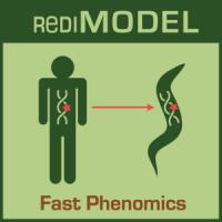 RediMODEL+icon3+sml