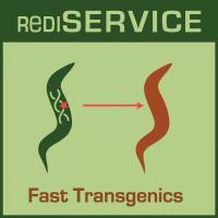 RediSERVICE-icon