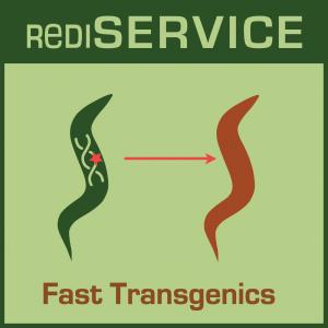 RediSERVICE icon