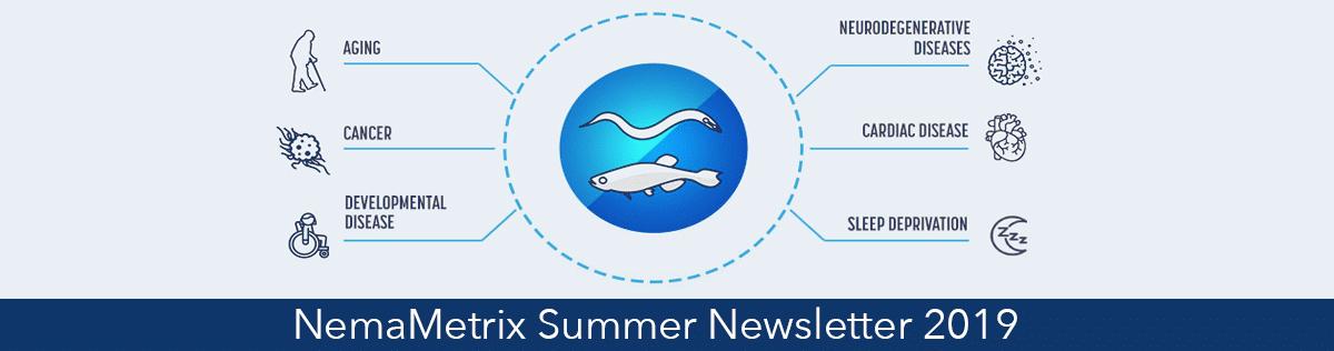 Summer_Newsletter_banner