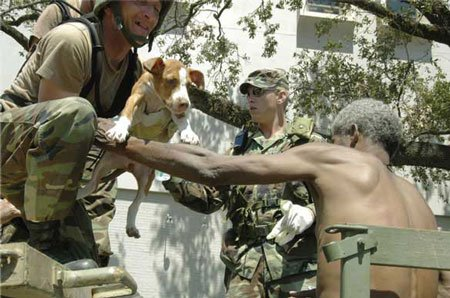 Dog being handed between rescuers after Hurricane Katrina
