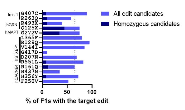 c. elegans point mutations figure 1