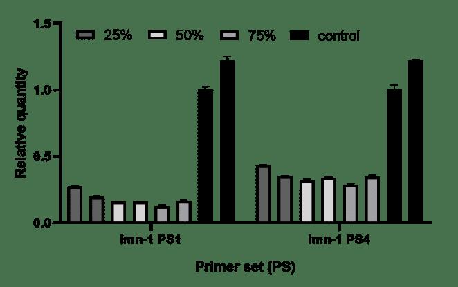 RNAi / Knockdown in C. elegans