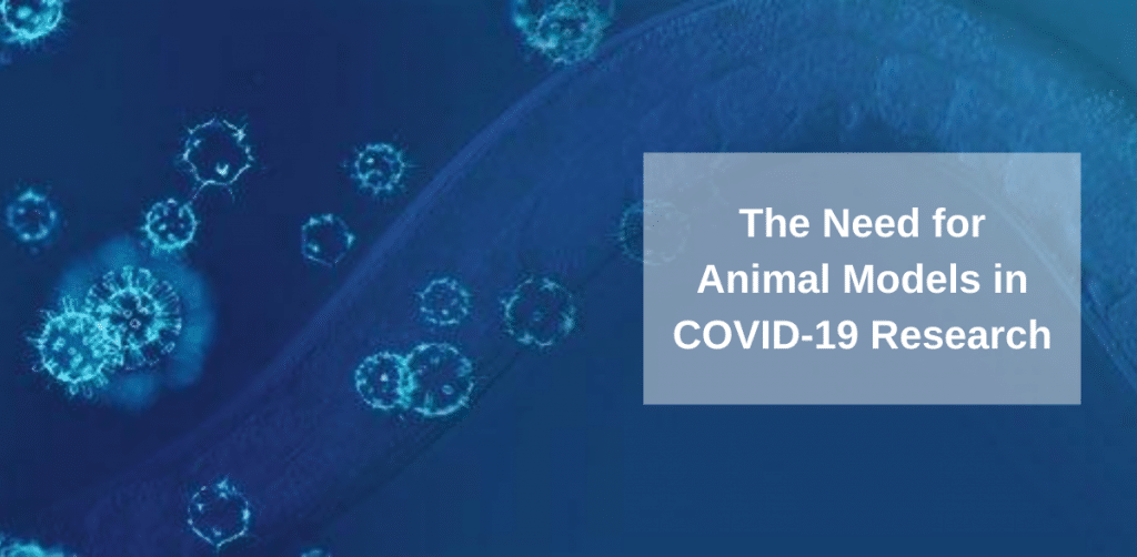 The need for aniaml models in COVID-19 research