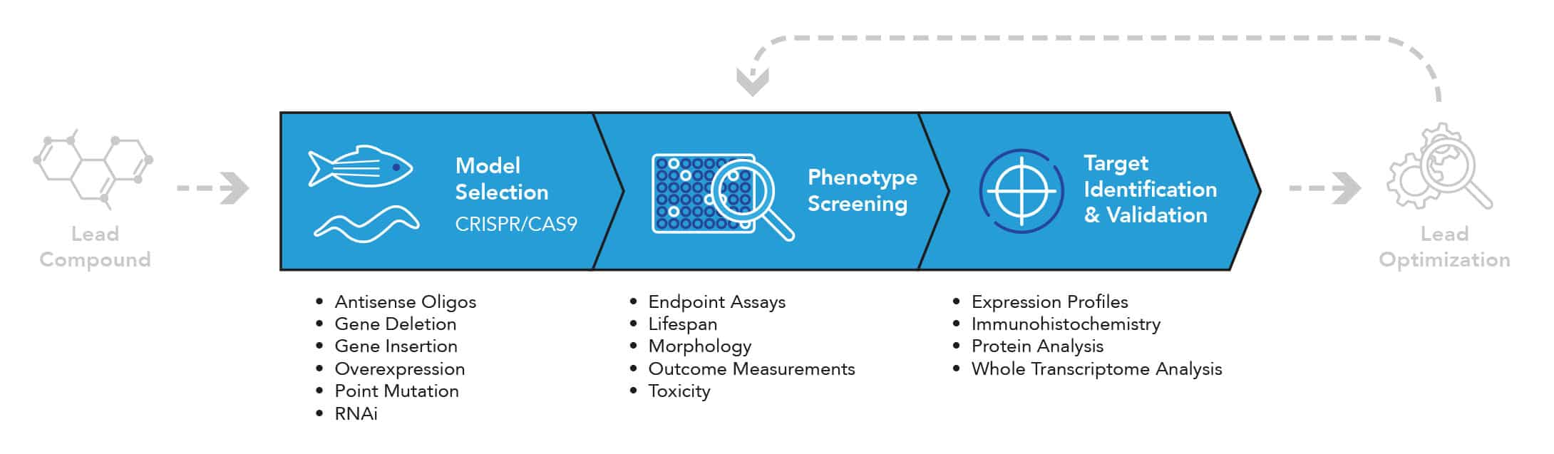 IVB Phenotype-based Approach