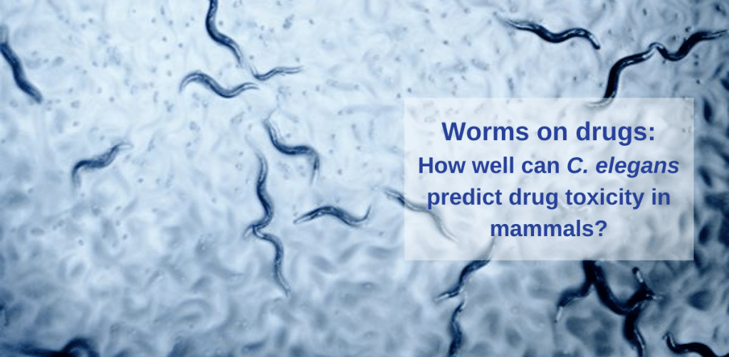 worms on drugs featured image