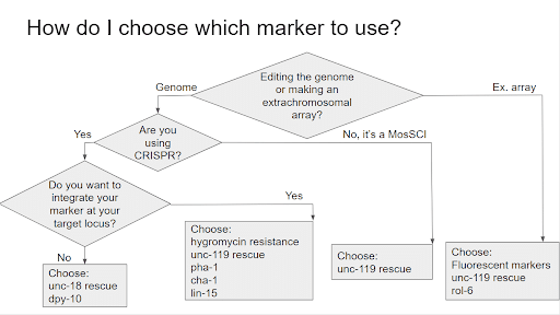how do i choose which marker to use?