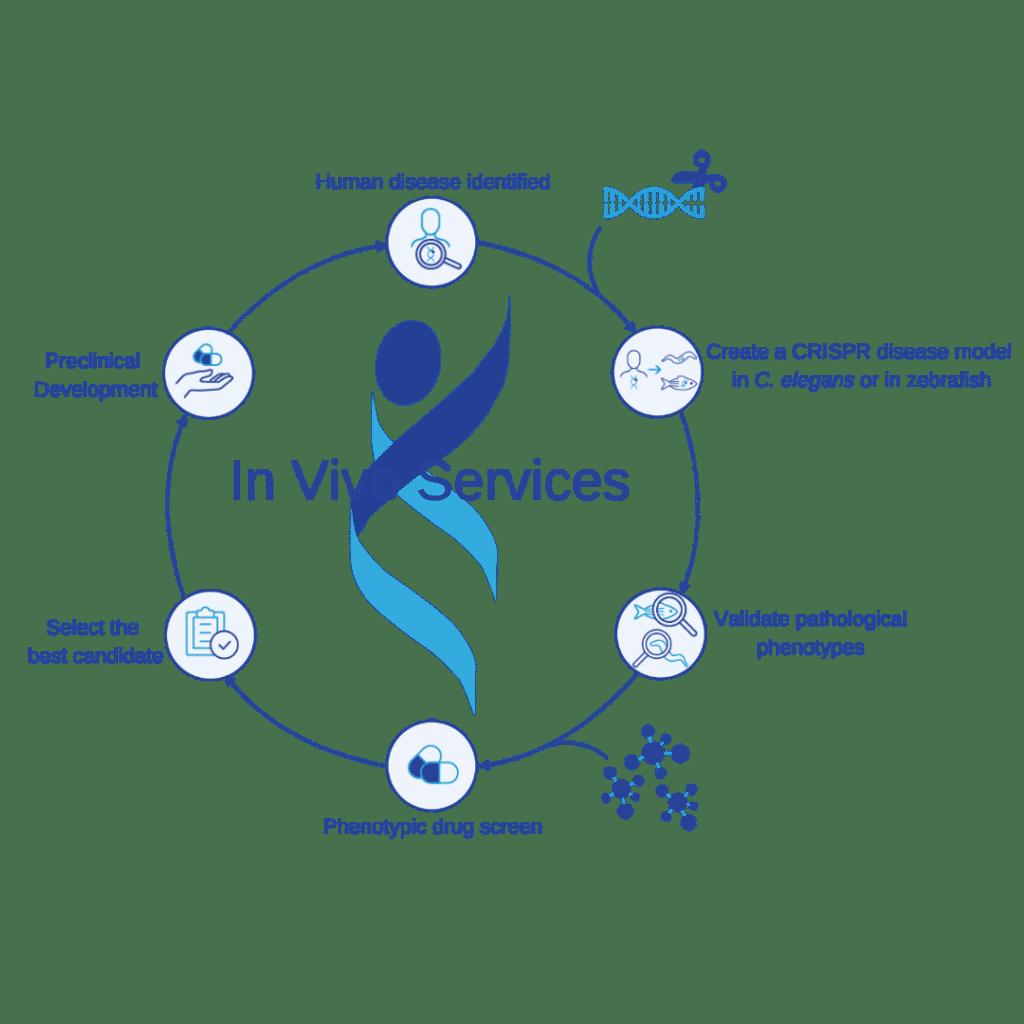 InVivo Services