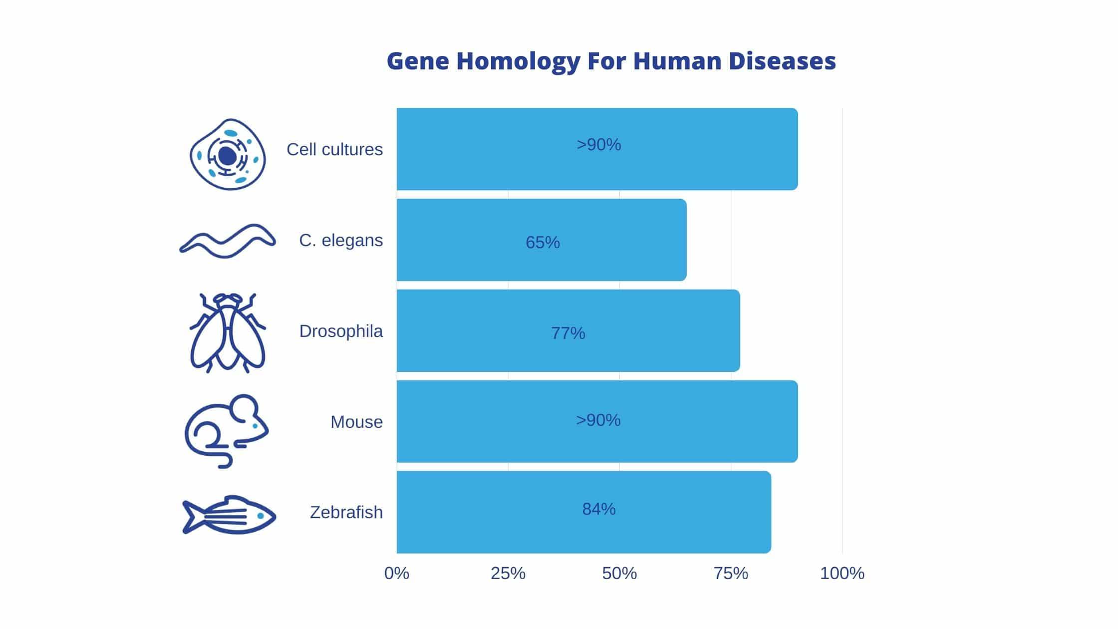 Gene homology for human diseases
