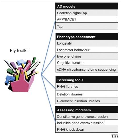 Figure 1. Image via Moloney et al., 2010.