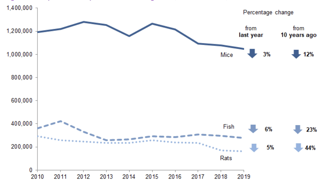 Figure Two: Experimental procedures using mice, fish, and rats 2010-2019 (Home Office, 2019).