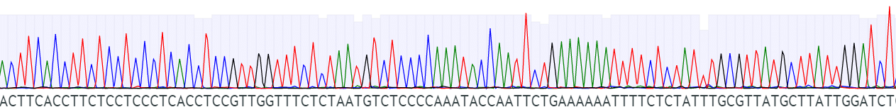 sequencing image (fig 3)